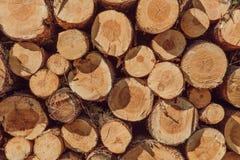 A pile of cut wood stump log texture Stock Photos