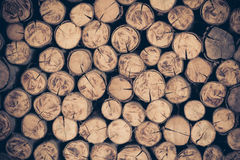 A pile of cut wood stump log texture Stock Photography