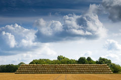 Pile of cylinder haystacks 2 Royalty Free Stock Photography