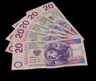 Pile d'argent polonais Photos libres de droits