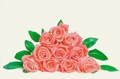 Pile d'isolat de fleurs de rose de rose sur le blanc Photo stock