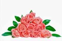 Pile d'isolat de fleurs de rose de rose sur le blanc Images stock