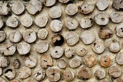 Pile d'un bois de chauffage de bouleau Photographie stock libre de droits
