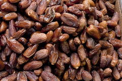 Pile of Date Palm Stock Photos