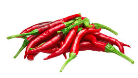 Pile of De Arbol chilies, paths. Pile of De Arbol chile peppers Capsicum annuum, red ripe. Clipping paths, shadowless Stock Images