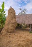 pile de balles de paille ou de foin dans un paysage rural Images stock