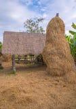 pile de balles de paille ou de foin dans un paysage rural Photo stock