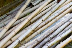 Pile de bambou coupé Photos libres de droits