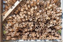 Pile de bambou sec pour le fond Image stock
