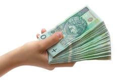 Pile de billets de banque polonais à disposition Photo libre de droits