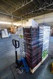 Pile de boîtes en plastique avec des tomates sur un chariot à main Photographie stock libre de droits