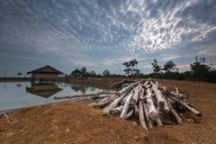 Pile de bois Image libre de droits