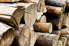 Pile de bois Photo stock