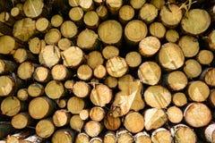 Pile de bois Photographie stock