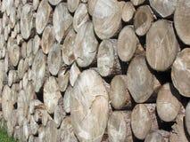 Pile de bois de chauffage empilée Tas de bois des rondins ronds Troncs en bois coupés photographie stock libre de droits