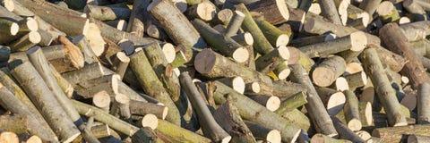 Pile de bois de chauffage de saule photos libres de droits