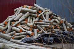 Pile de bois coupé d'incendie Photos stock
