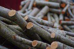 Pile de bois coupé d'incendie Images libres de droits