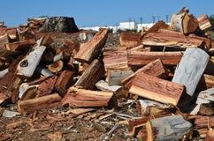 Pile de bois de charpente sur la terre couverte du bois sec Images stock