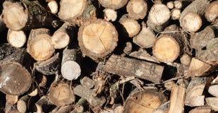 Pile de bois de chauffage désordonné Photos libres de droits
