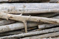 Pile de bois de flottage Images libres de droits