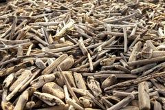 Pile de bois de flottage Photographie stock libre de droits
