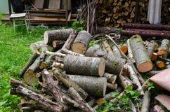 Pile de branche coupé de rondins au bûcher dans le jardin Photo libre de droits