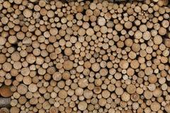 Pile de branches d'arbre Photographie stock libre de droits
