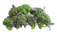 Pile de brocoli pourpre sur un fond clair photos libres de droits