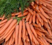 Pile de carottes sélectionnées fraîches image stock
