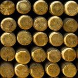 Pile de clôturer la bâton-place Images stock