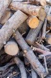Pile de composition de branches d'arbre photos libres de droits