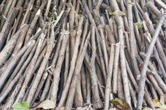 Pile de composition de branches d'arbre comme texture de fond Photo stock