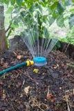Pile de compost d'humidification utilisant l'arroseuse Photographie stock libre de droits