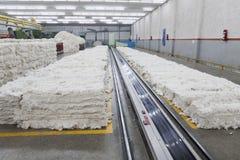 Pile de coton dans la chambre de coup Image libre de droits