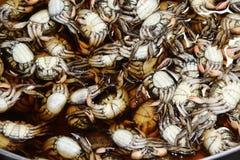 Pile de crabe préservé avec du sel dans l'eau salée Le crabe de palétuvier de Meder, griffes sont pourpre rougeâtre image libre de droits