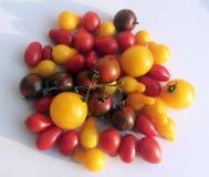 Pile de diverses tomates rouges et jaunes sur le backgrou blanc de studio Photographie stock