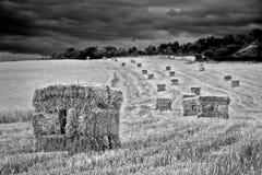 Pile de foin en noir et blanc Image libre de droits