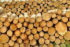 Pile de forêt coupée d'identifiez-vous image stock