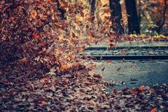 Pile de fort vent de feuilles Photographie stock