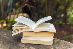 Pile de livres sur une roche Photo libre de droits
