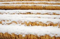 Pile de logarithmes naturels couverte par neige Images libres de droits