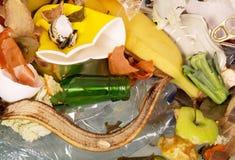 Pile de ménage et de déchets alimentaires Texture photos stock