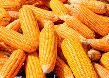 Pile de maïs Image libre de droits