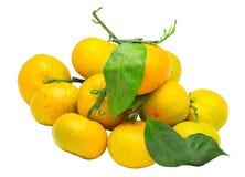 Pile de mandarine mûre fraîche avec de petites brindilles et feuilles Image stock