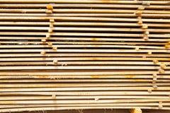 Pile de panneaux en bois de teck dans la cour de bois de charpente pile en bois Images stock
