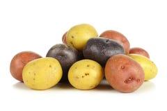 Pile de petites pommes de terre colorées au-dessus de blanc image stock