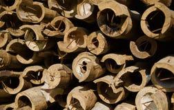 Pile de photo unique de matériaux en bambou images libres de droits