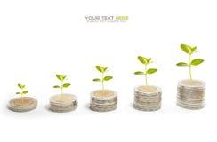 Pile de pièce de monnaie Image libre de droits
