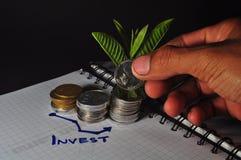 Pile de pi?ce de monnaie et de diagramme indon?siens investissement Usine s'élevant sur la pièce de monnaie image libre de droits